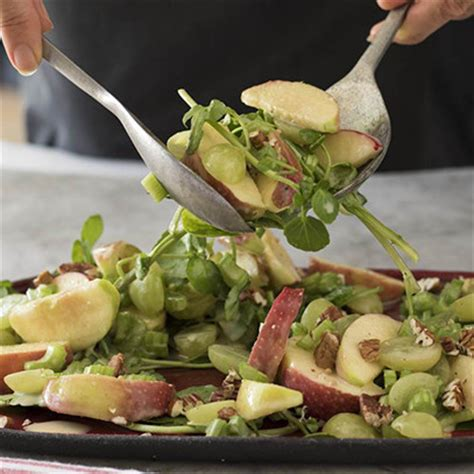 Link Vintage Apple Celery And Nut Salad by Ina Paarman Apple And Celery Salad With Nuts