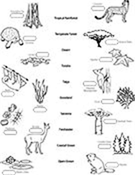 ask a biologist coloring page biome map 14 best images about biomes on pinterest activities