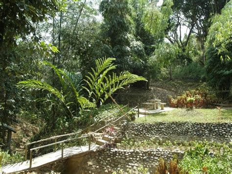 Botanical Garden La Bamboo Trail Picture Of La Union Botanical Garden San Fernando La Union Tripadvisor