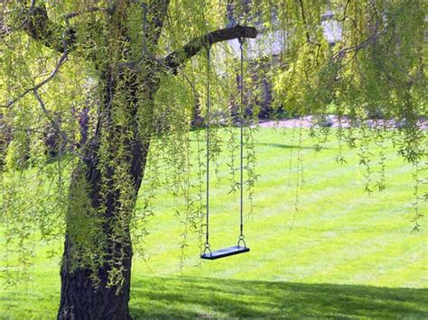benefits of swinging health benefits of swinging yes even swinging is an