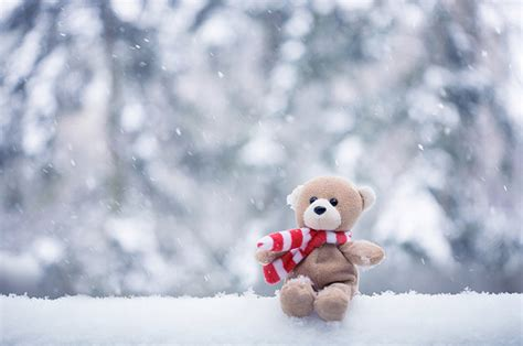 Teeny Tiny Update On A Cold And Wintry Nighti by Bokeh Cachecol Cold Inverno Invierno Image