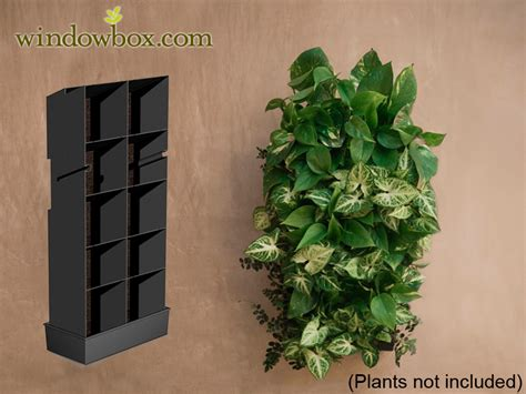 indoor wall planters water collector for indoor living wall planter vertical