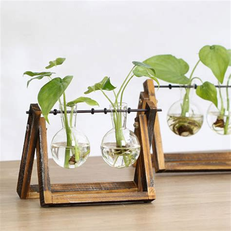Vase Stands Wood by Hydroponics Glass Vase With Wood Stand Apollobox