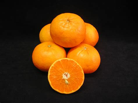 mandarins and tangors for western australia agriculture and food