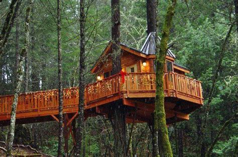 bed and breakfast oregon bed and breakfast treehouse in oregon beautiful homes pinterest