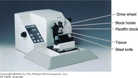 microtome sectioning procedure de histology preparation of tissues for microscopic