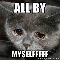 Cute Cat Meme Generator - sad cute cat meme generator