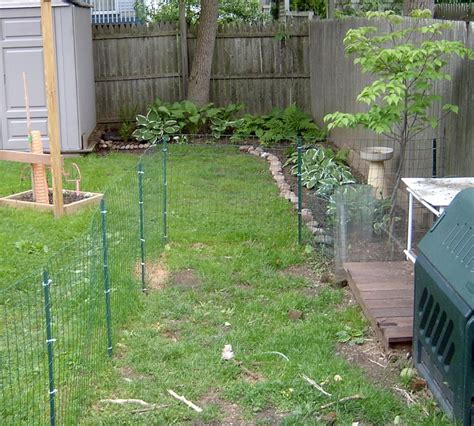 Backyard Fence For Dogs by Fence And Deck