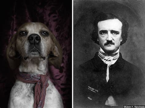 edgar allan poe a biography by daniel dyer poetic dogs dan bannino