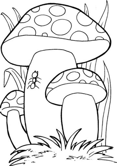 imagenes de hongos faciles para dibujar fungo funghi autunno