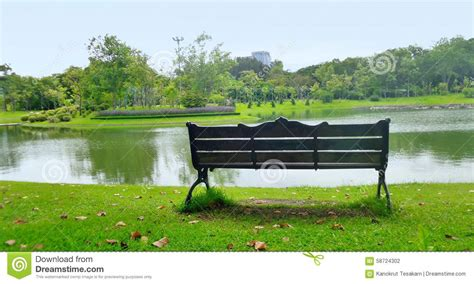 peace bench peace of mind on empty garden bench on quiet lake side corner