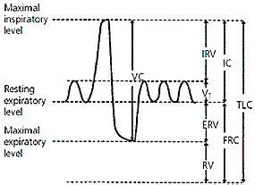 An Approach To Interpreting Spirometry American Family Physician Pft Interpretation Template
