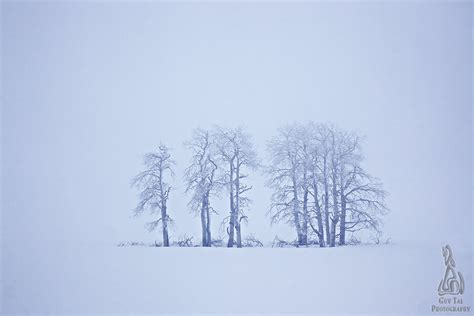 the landscape photographer s guide to photoshop a visualization driven workflow books whiteout photograph by tal