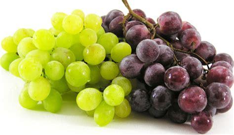 imagenes de vinos uvas alimento da semana uva alimentarte