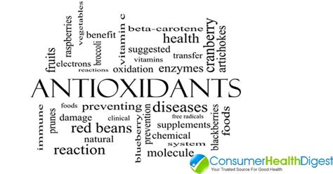 Do Antioxidants Help With The Prevention Against Aging 10 best antioxidant foods to prevent skin aging