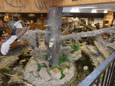 www smoky mountain knife works smoky mountain knife works water indoor quot tree quot picture