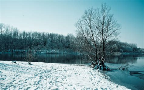 hd landscapes winter snow trees high resolution pictures wallpaper