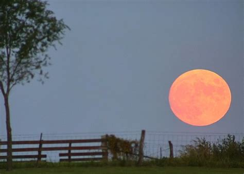 harvest moon shine on harvest moon now david reneke space and astronomy news