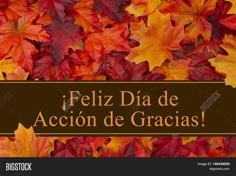 imagenes feliz dia de thanksgiving happy thanksgiving greeting spanish image photo bigstock