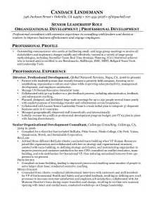 sample resume for small business owner