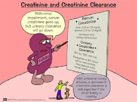 creatinine s help me pass nursing school ask me anything