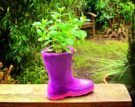Welly Boot Planter by 1000 Images About Garden Ideas On Gardens