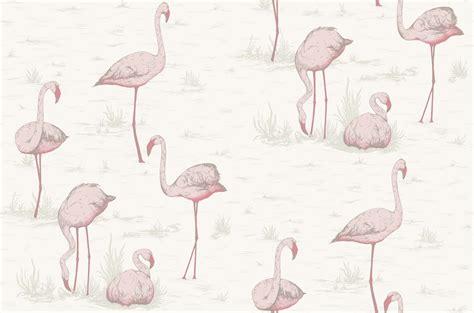 flamingo print wallpaper flamingos 95 8045 contemporary restyled cole son