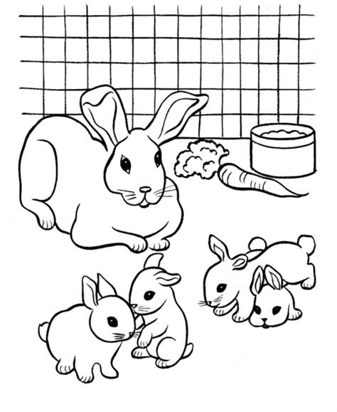 rabbit hutch coloring page coloring pages for kids rabbit and babies drawing