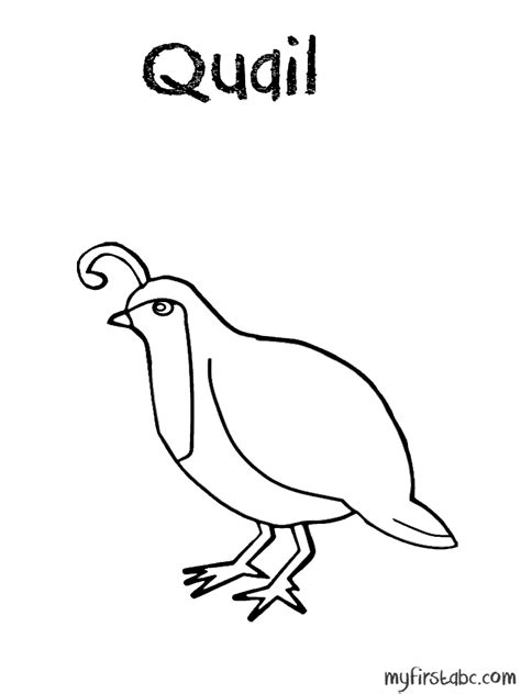 Free Coloring Page Quail by Quail Coloring Pages Coloring Home