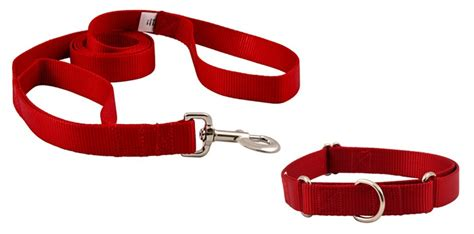 collars and leashes leash handle and collar heavyduty martingale