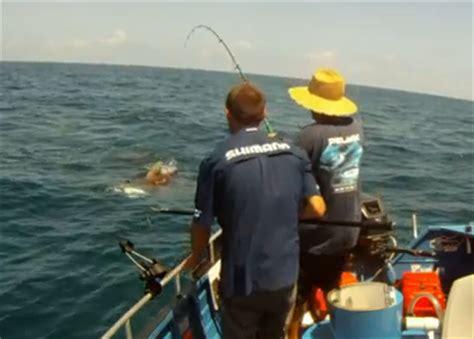 monster crocodile attacks fishing boat international fishing news 2013 02
