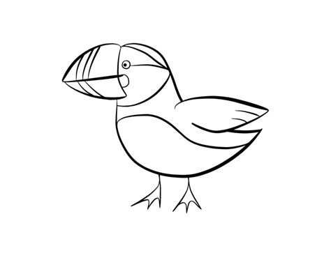 puffin coloring page coloring home