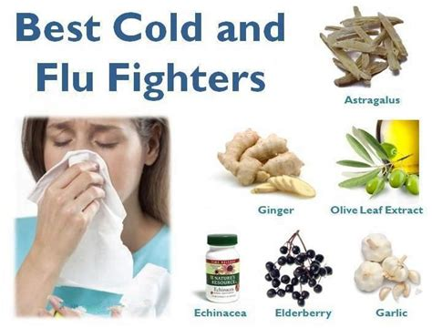 8 Tips To Fight A Cold by Most Important Foods To Fight Against The Common Cold 1