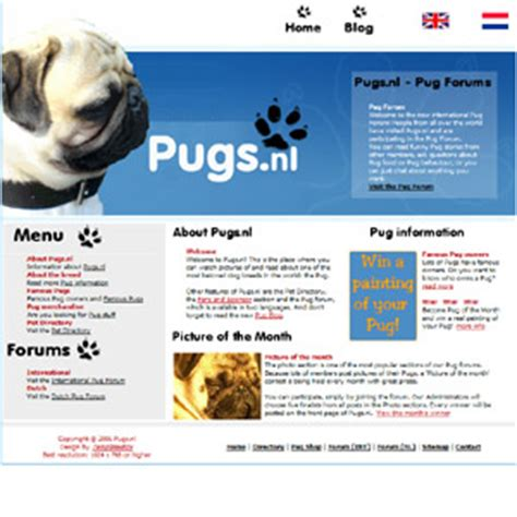 oldest pug in the world pugs breed dogs animals pets read and write about one of the oldest