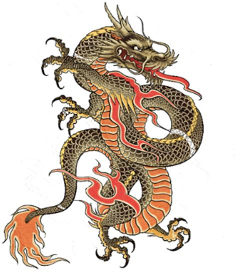 Chinese Tattoo Png | japanes dragon tattoos designs 79 png 306 215 351 chinese