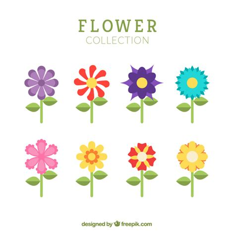 colorful flowers in flat design vector free download