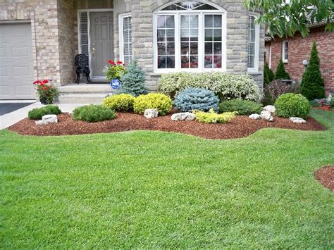 Bushes For Landscaping Evergreen Shrubs For Landscaping Swerving Garden Bed With Evergreen Shrubs Plants And Accent