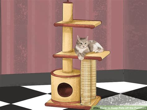 4 ways to keep pets the furniture wikihow