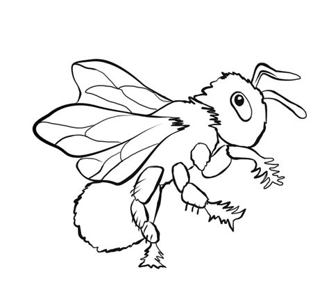 a bug coloring pages