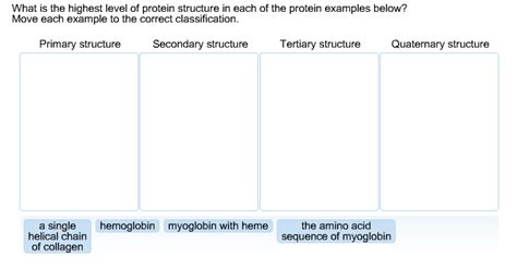 u protein level solved what is the highest level of protein structure in