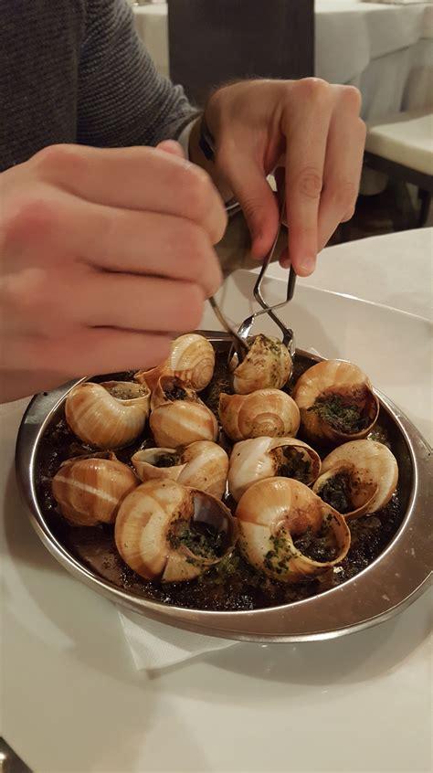 alimentazione lumache il ruolo delle lumache nella dieta nutrizionismi it