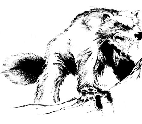 wolverine coloring page animals town animals color