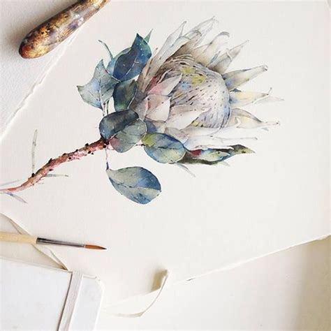 sketchbook watercolor 1000 ideas about watercolor sketch on