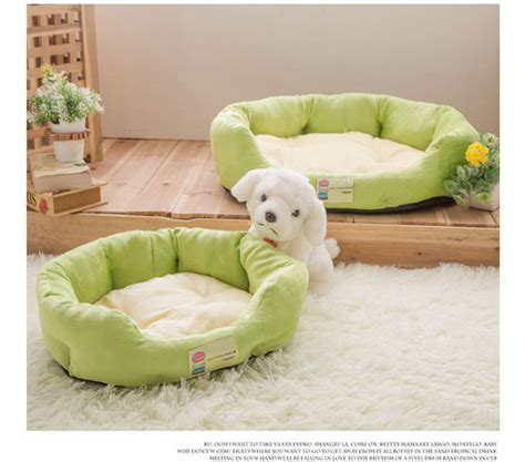 cat macaron bed hot sales dog boom fruit color pet cat dog bed promotion
