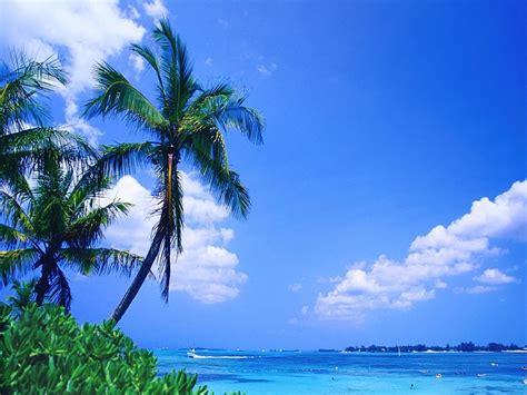 computer wallpaper tropical tropical beach desktop wallpaper wallpapersafari