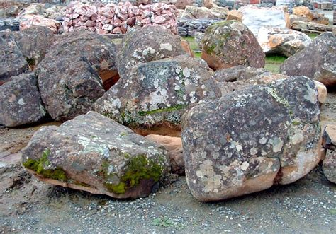 related keywords suggestions for moss boulders