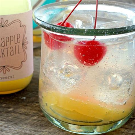 25 best ideas about easy vodka drinks on pinterest easy mixed drinks simple vodka cocktails