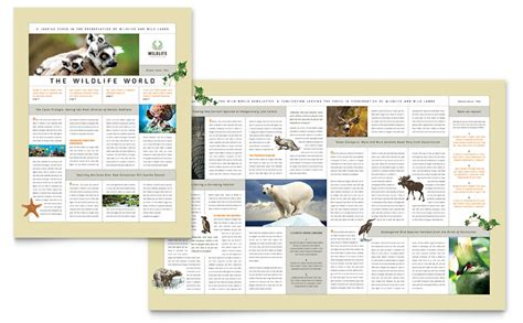 Nature Wildlife Conservation Newsletter Template Word Publisher Free Magazine Layout Templates For Publisher