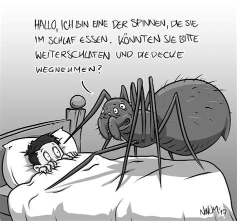 spinnen essen im schlaf spinne im schlaf essen by inovumi nature toonpool