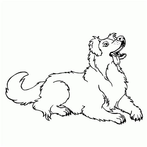 australian shepherd coloring pages coloring home